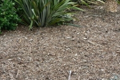 aborist-aborcaretm-mulch-1