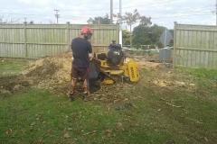 aborist-aborcaretm-stump-grinding-5