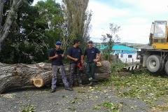 aborist-aborcaretm-tree-removal-2